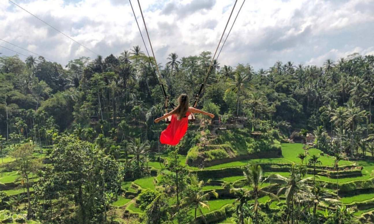 jungle swing in Bali