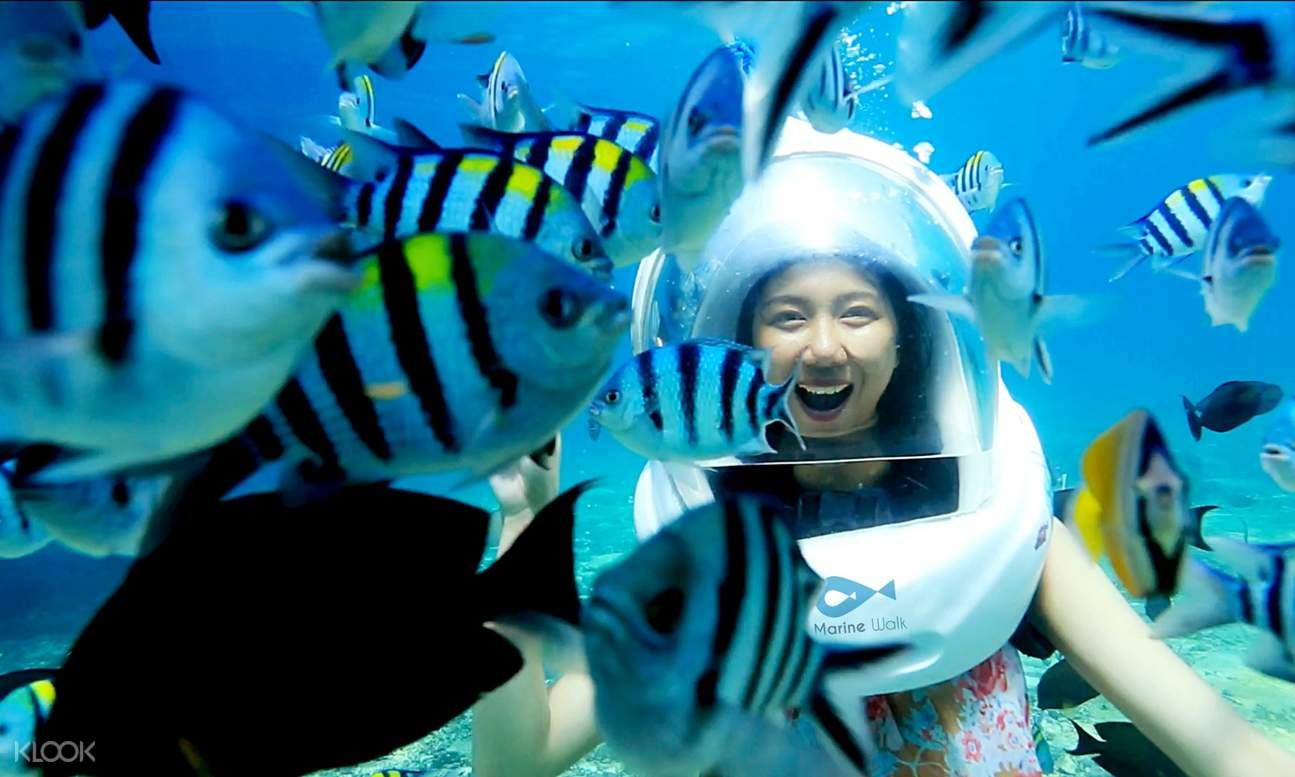 fish and woman wearing underwater helmet