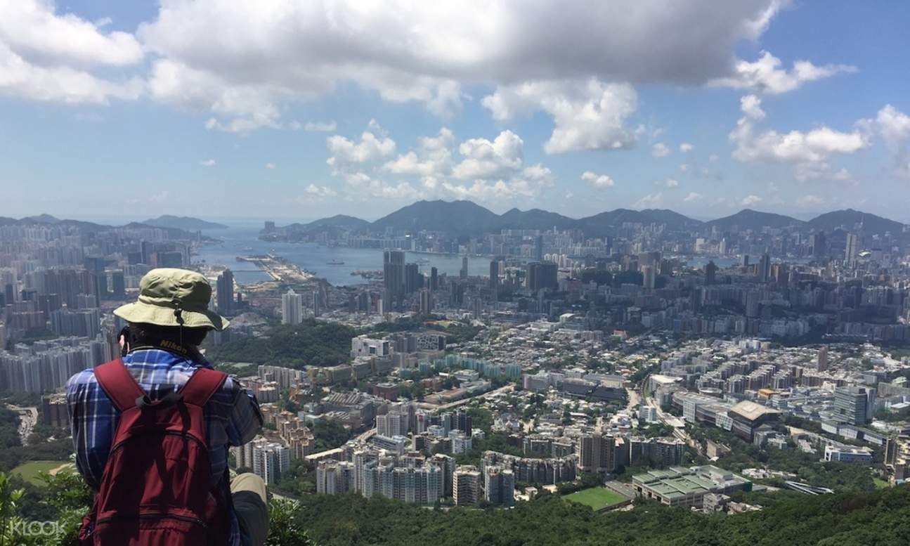 view of hong kong from lion rock