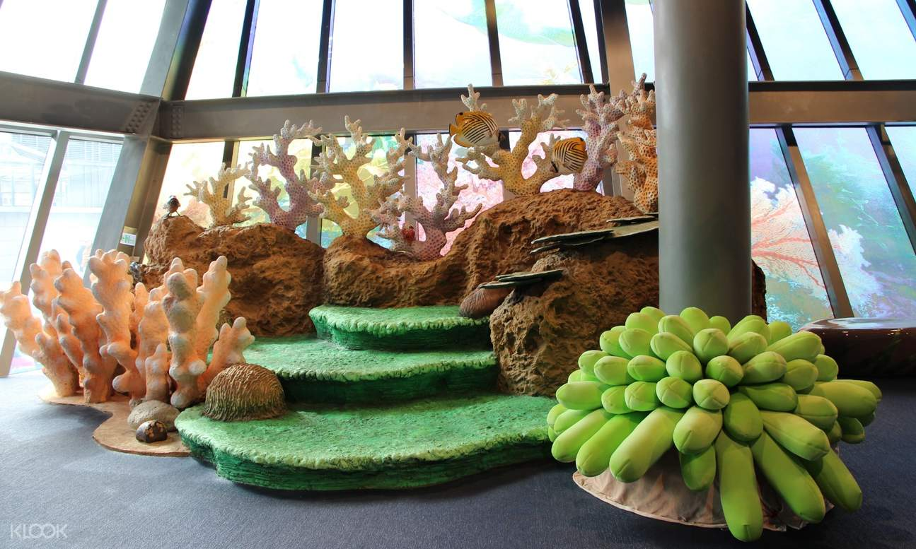 installation of marine landscapes and flora