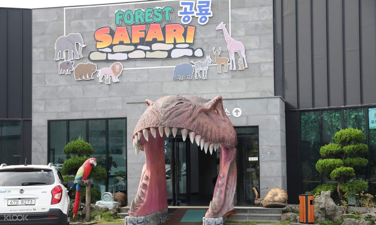 Food and Cafe in Forest Safari in Jeju