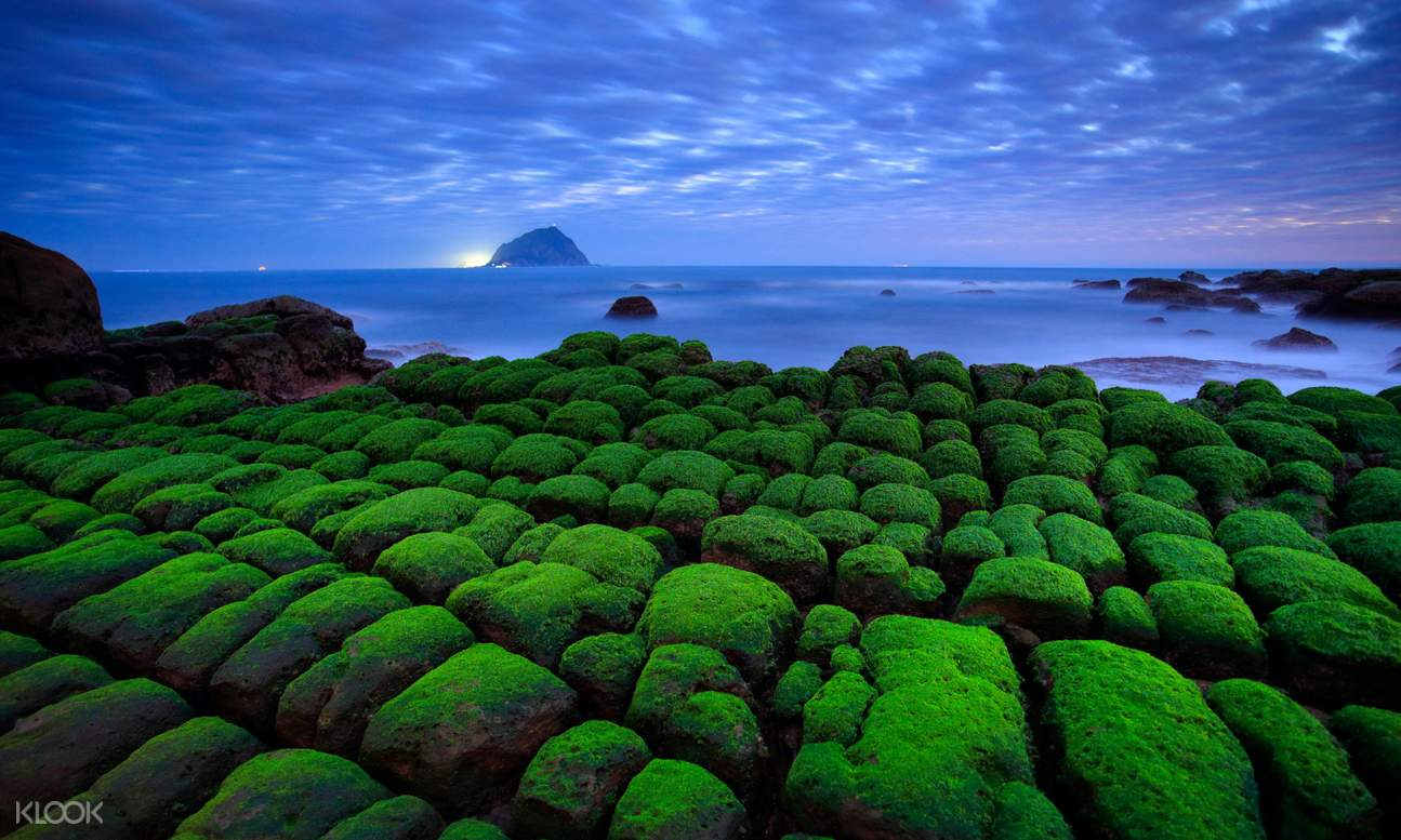 moss-covered rocks and fog over the ocean in the distance