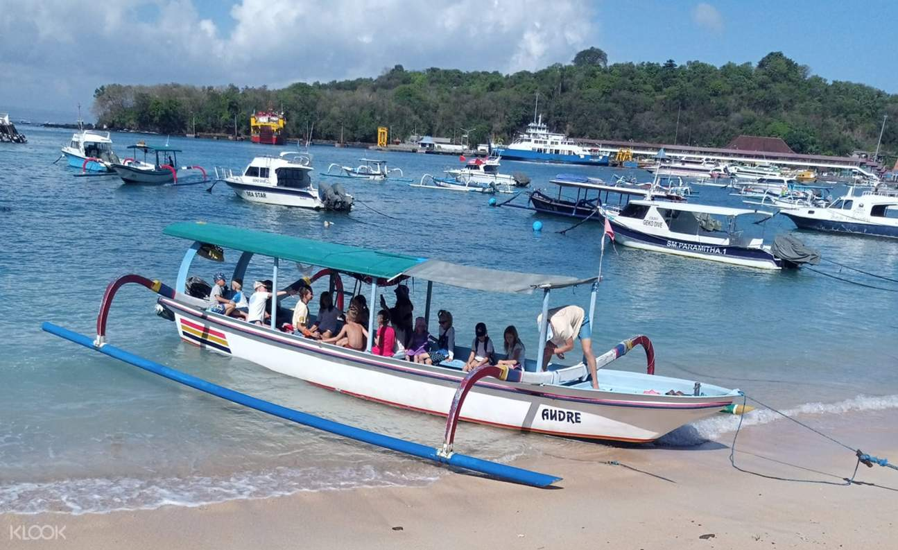 Blue Lagoon Snorkeling in Bali With Optional Sightseeing Gate of Heaven Tour