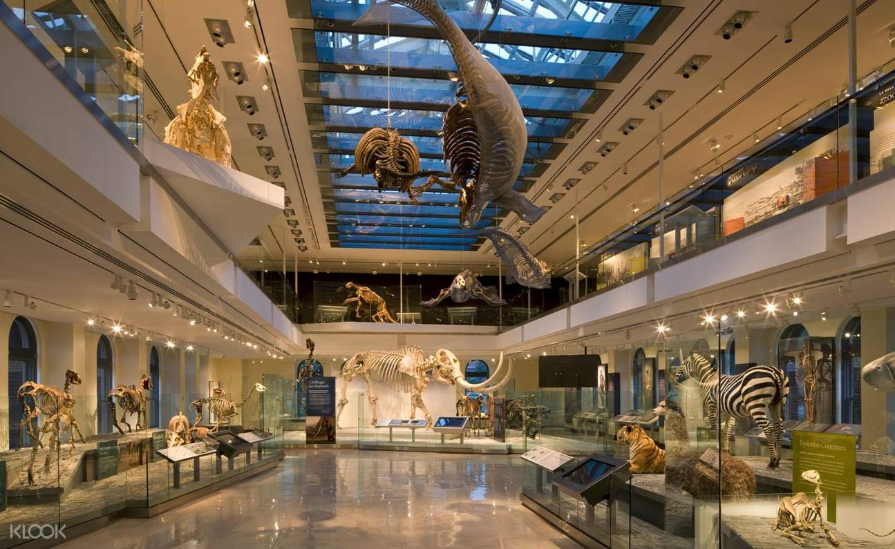 natural history museum los angeles dinosaur hall