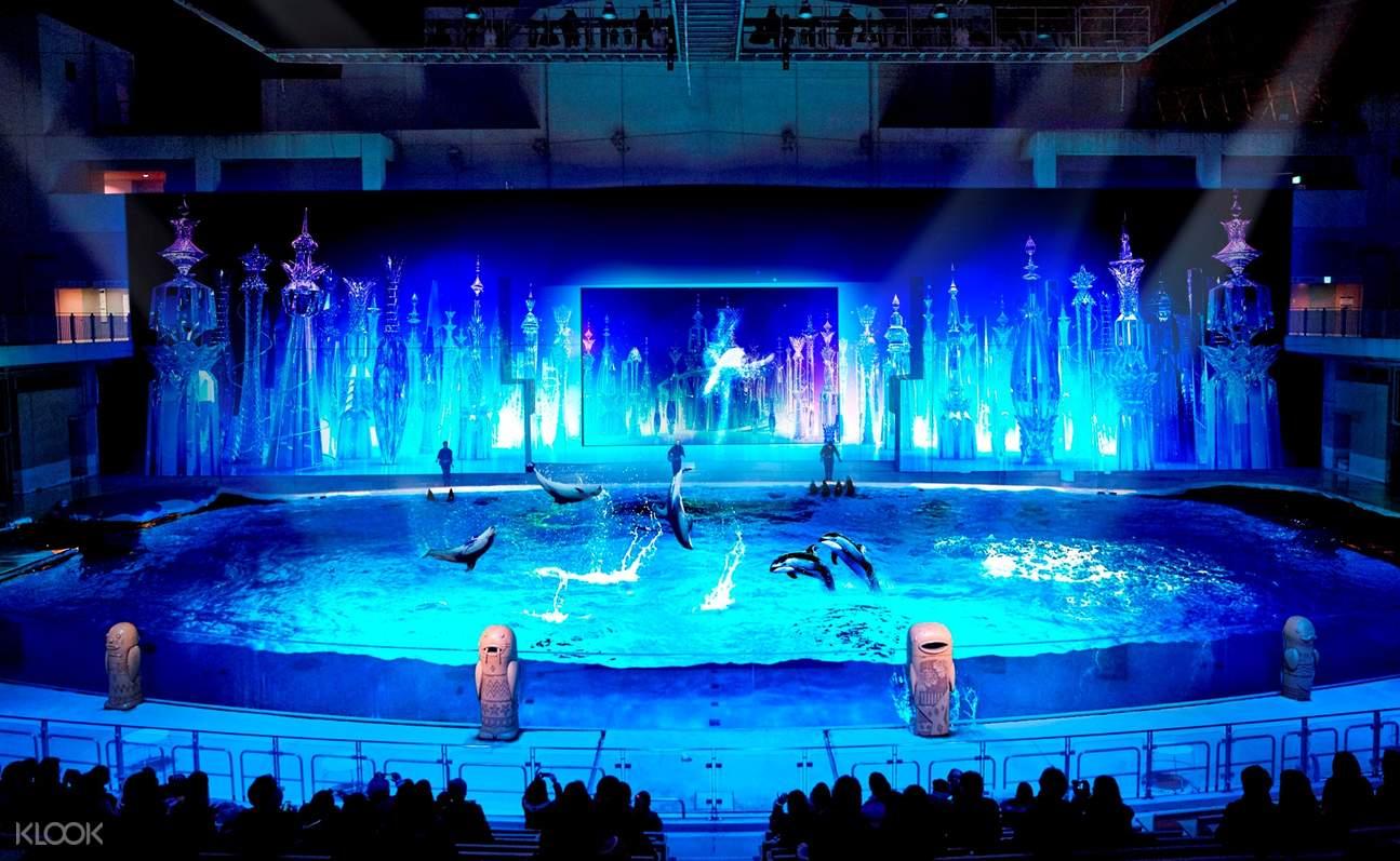 Yokohama Hakkeijima Sea Paradise dolphin show