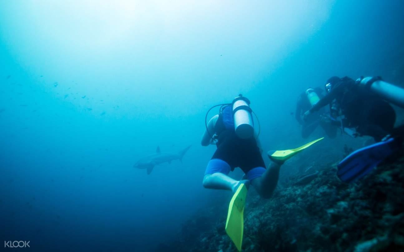 马拉帕斯卡岛浮潜