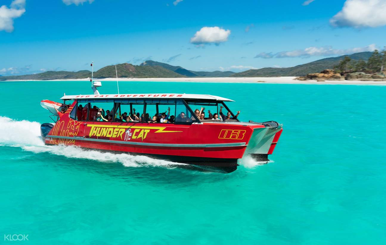 thundercat catamaran