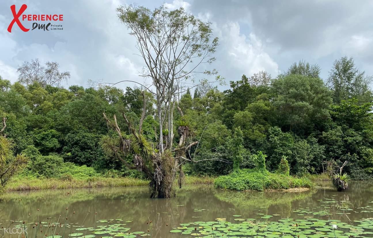 First wetlands sanctuary
