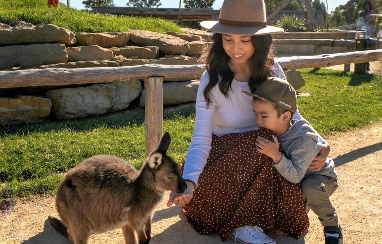sydney zoo animals