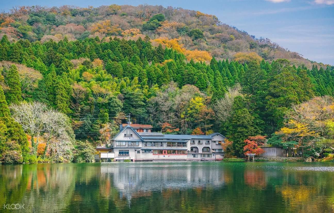 别府八大地域温泉,汤布院,九重梦大吊桥,金鱗湖,别府一日游,日本温泉观光