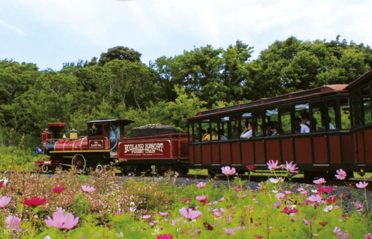 ecoland forest train
