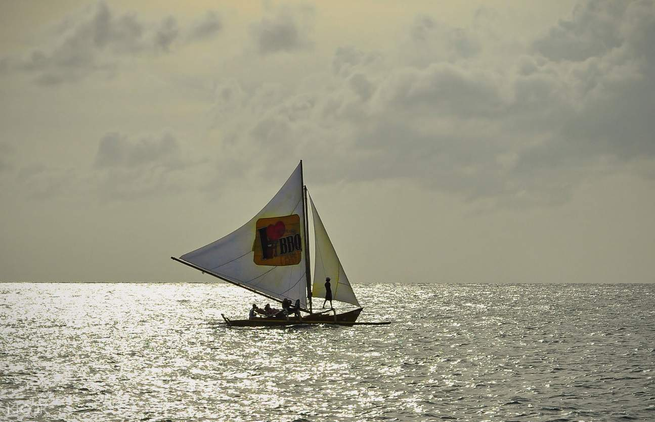 sail boat in the sea