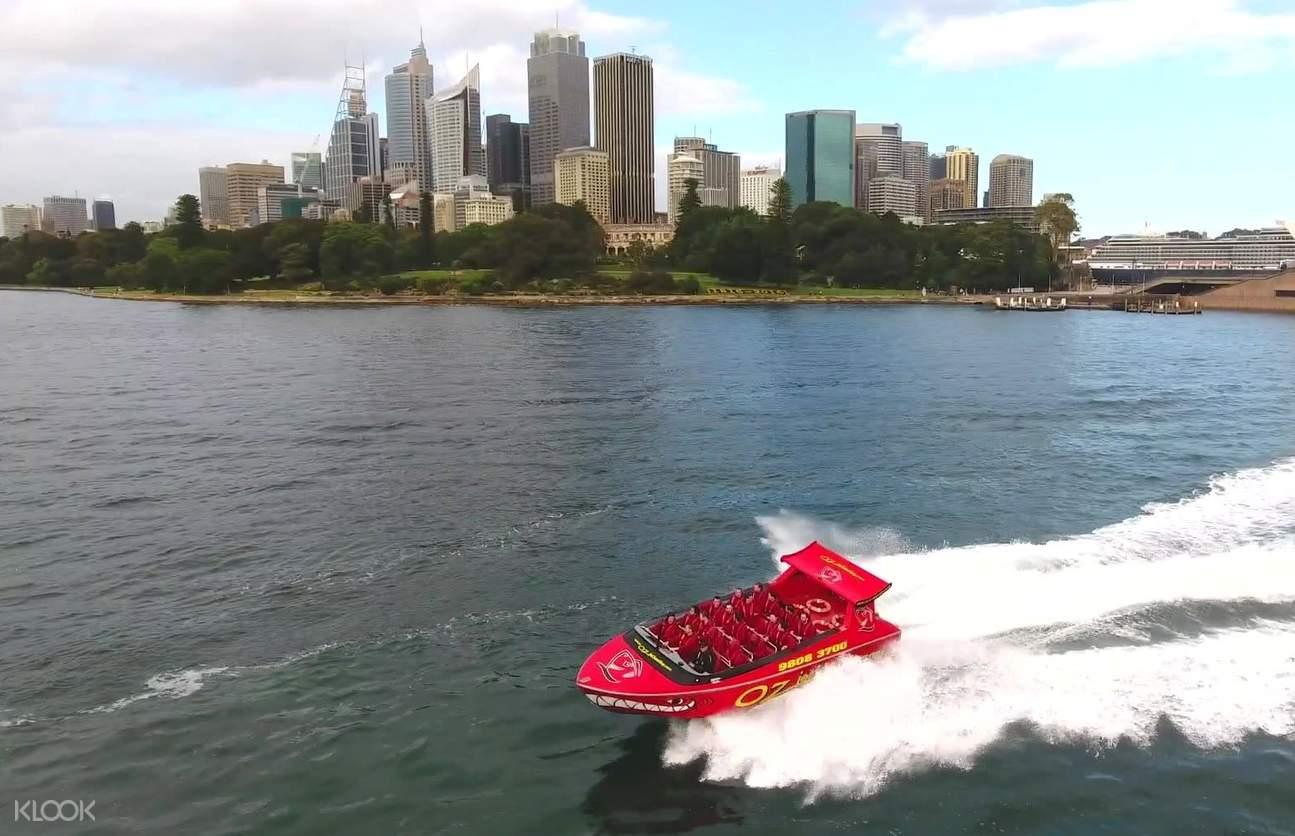 shark attack jet boat ride