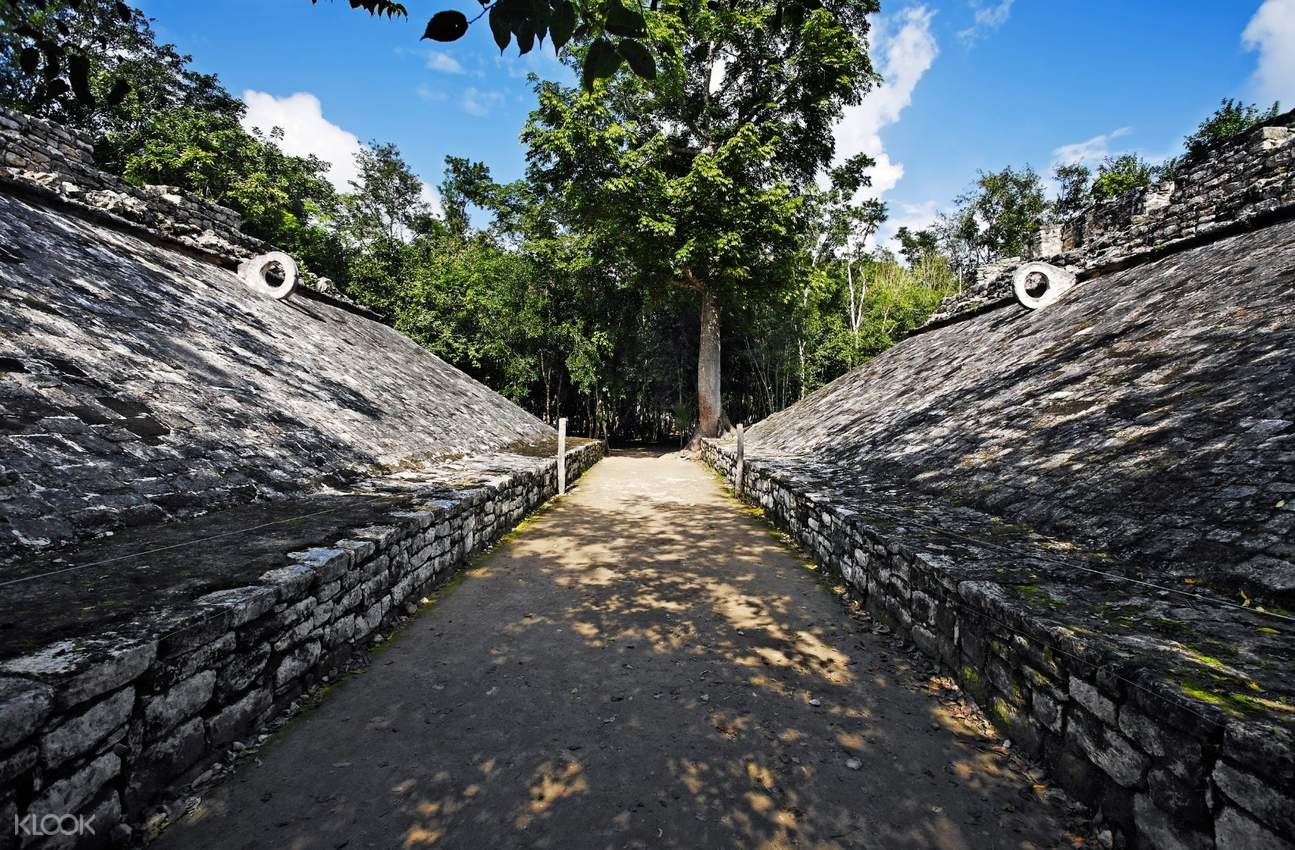 Learn all about the Mayan civilization