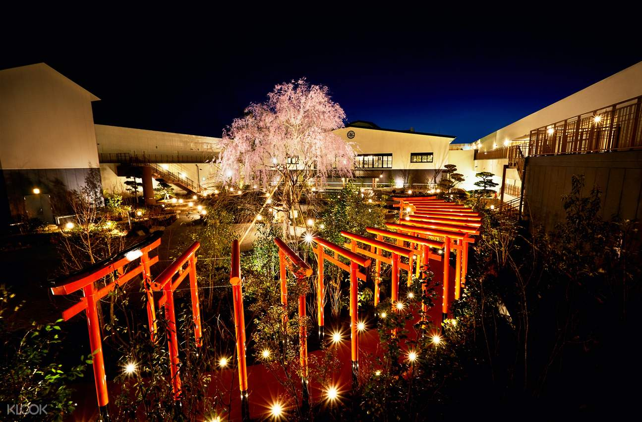 view of the rooftop garden at night