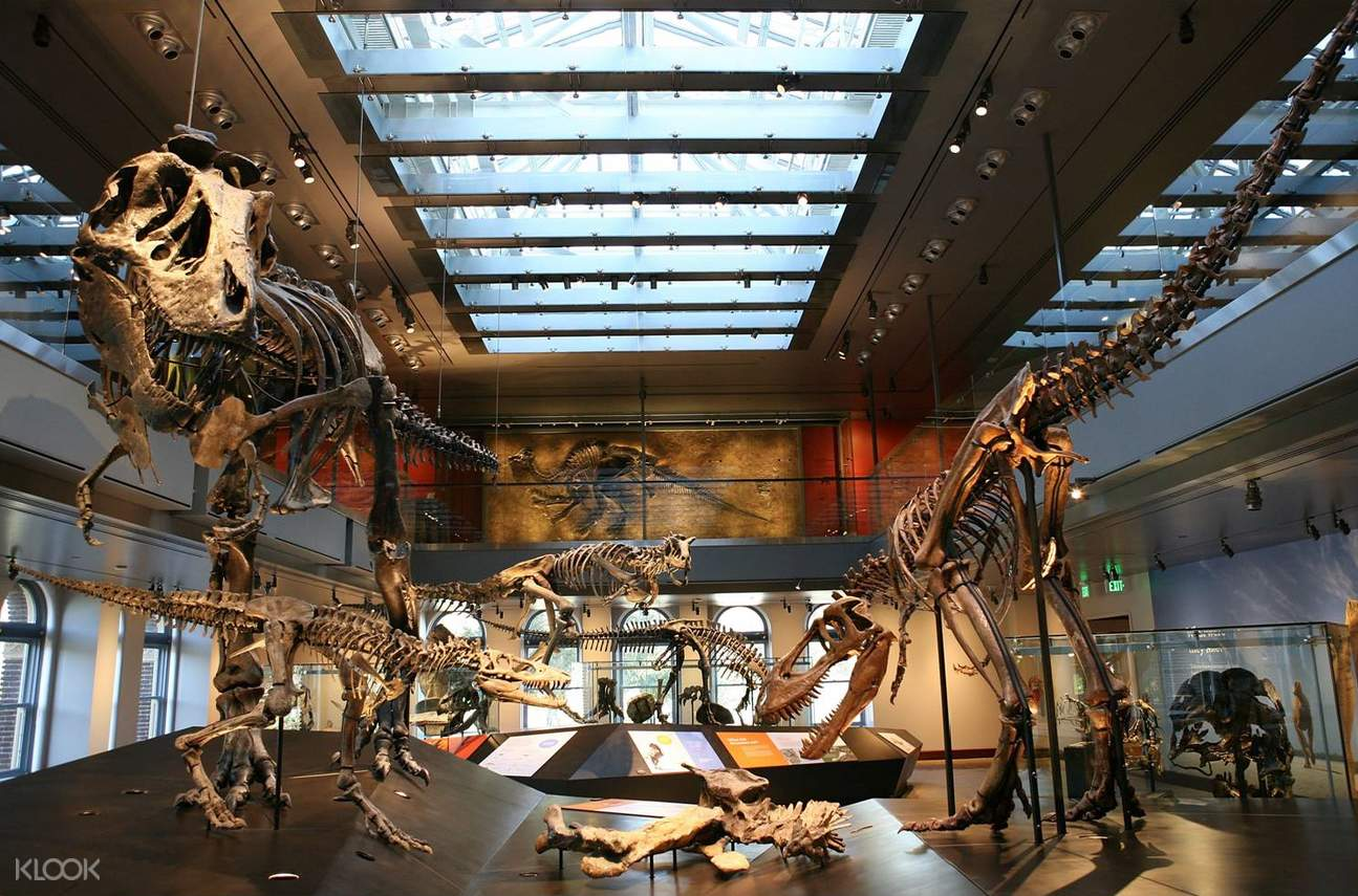 natural history museum los angeles admission
