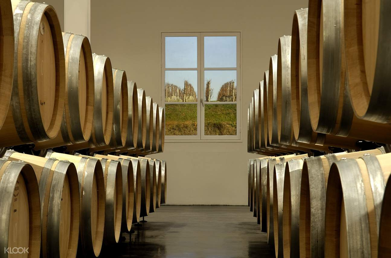 medoc wines tour full day from bordeaux