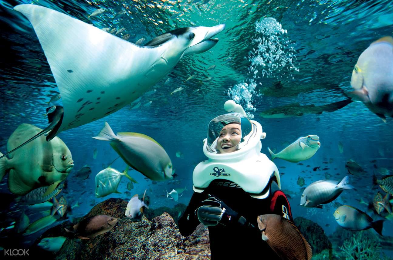 新加坡圣淘沙水上探险乐园 终极海洋体验