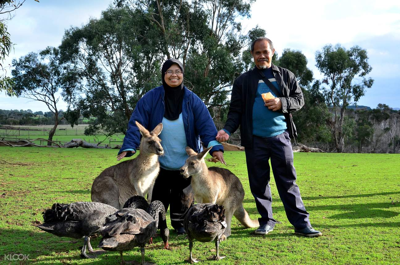澳大利亞動物園