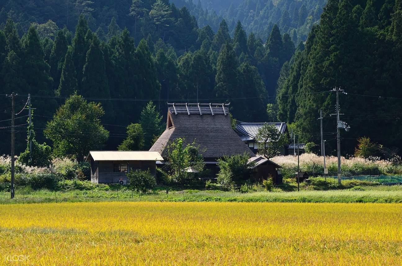 miyama kayabuki no sato day tour