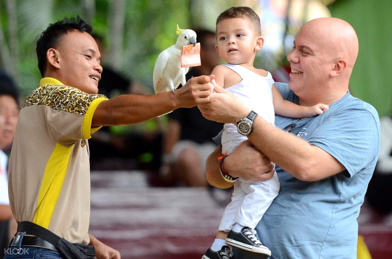 parrots of A'Famosa Safari Wonderland Melaka