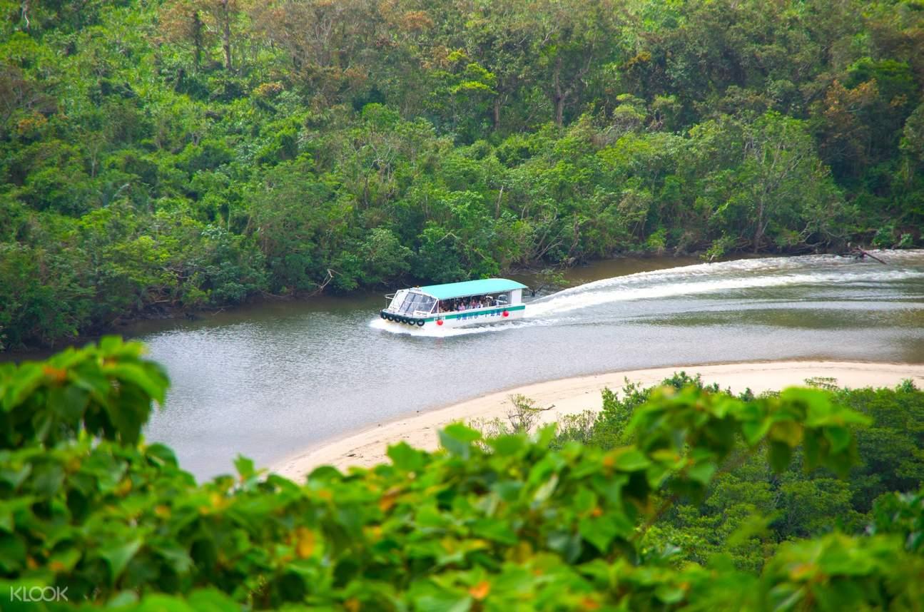 mangrove tour nakagawa river