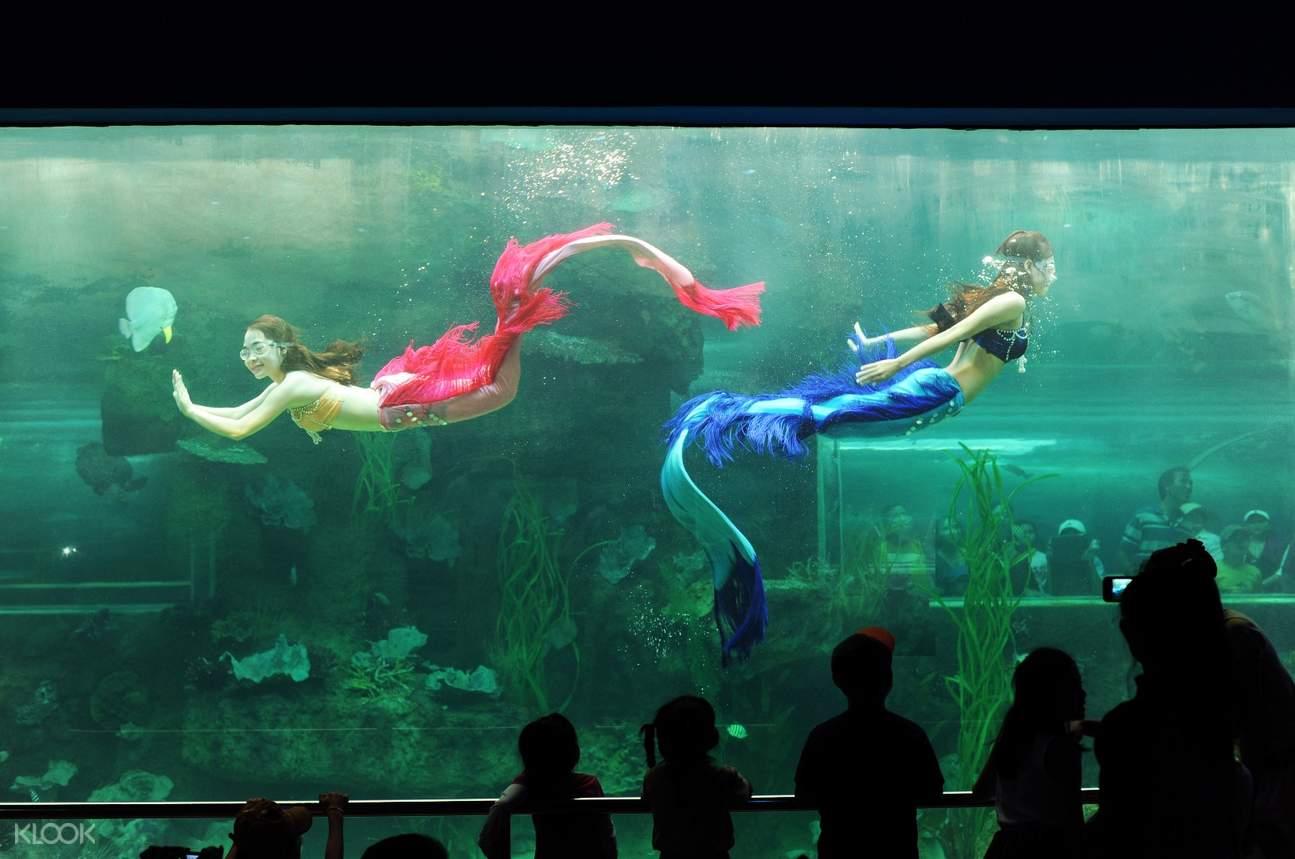 Vinpearl mermaid show
