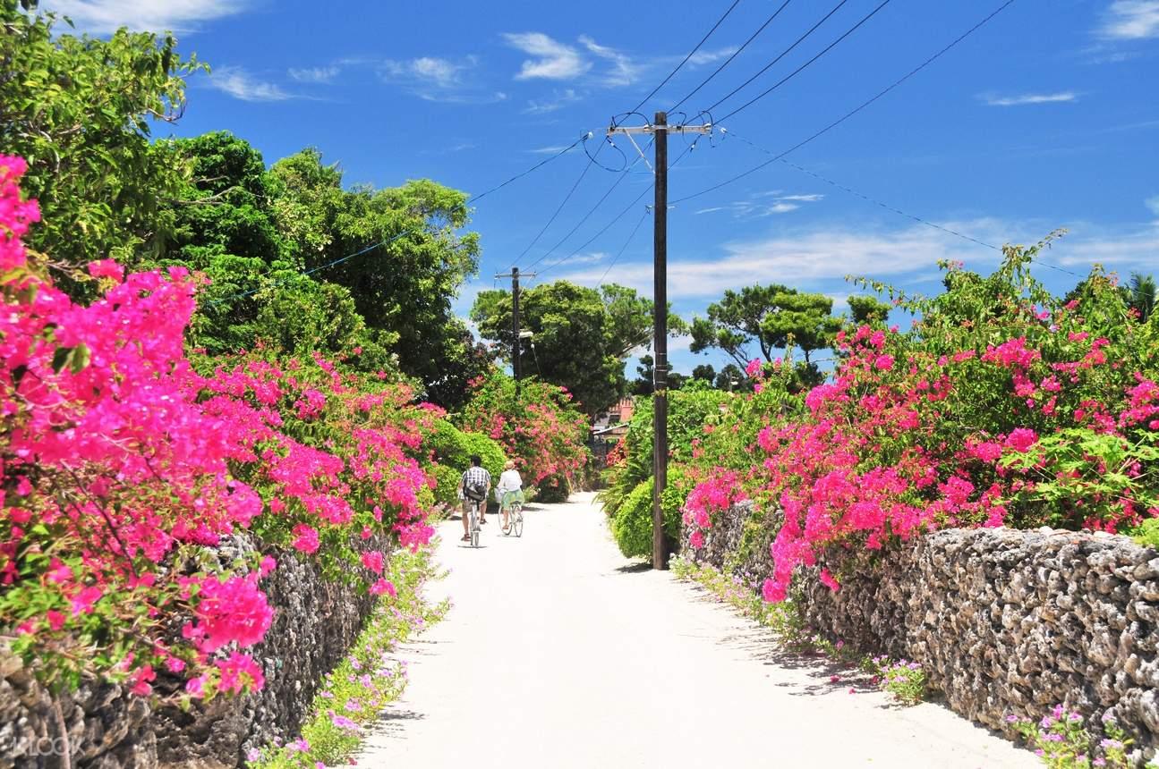 taketomi island bike rental