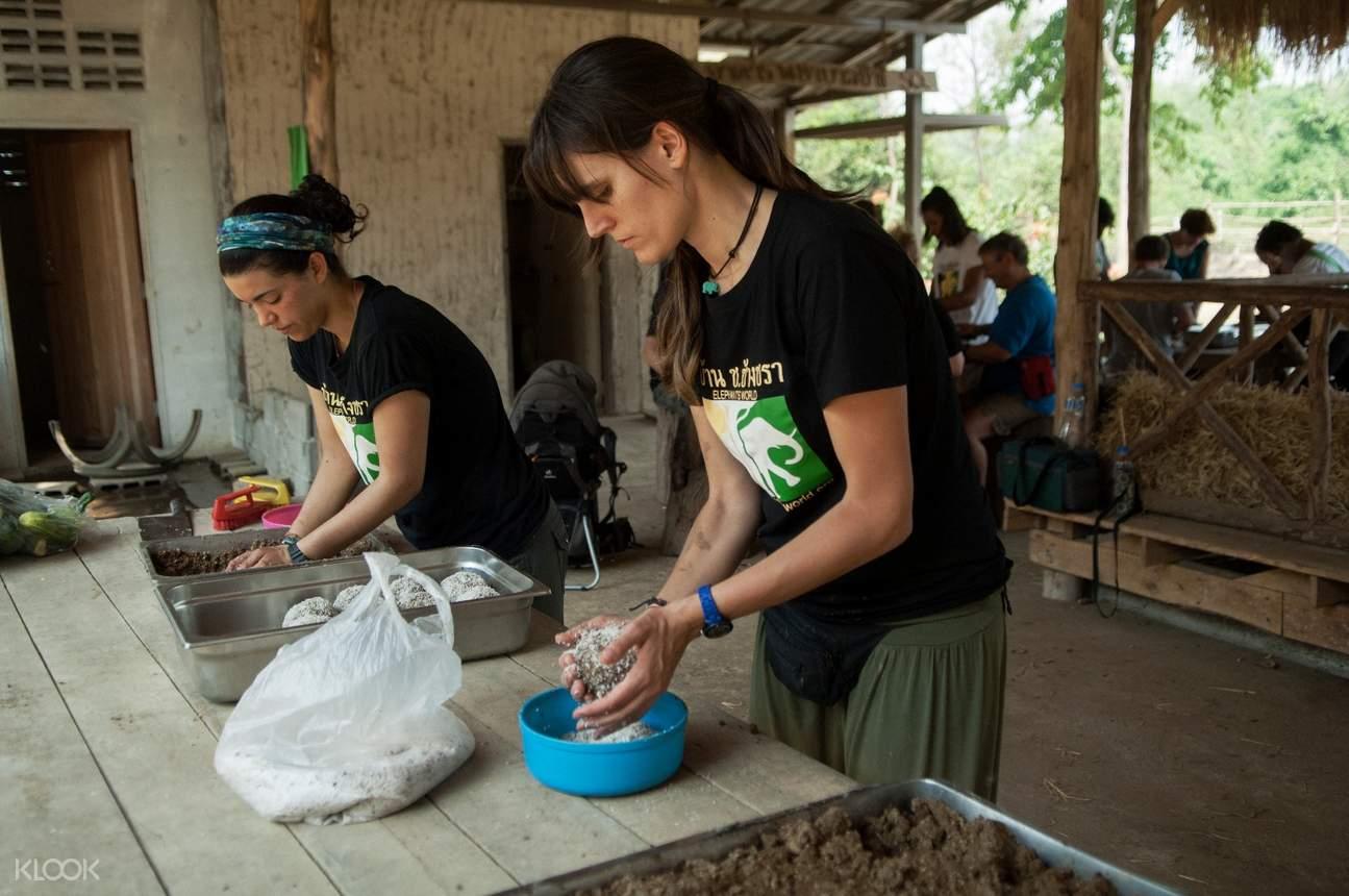 Feeding elephants at ElephantsWorld in Kanchanaburi, Thailand