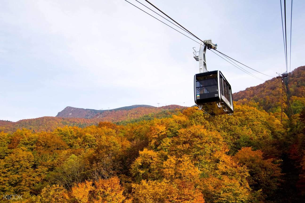 Zao Ropeway Round Trip Ticket Autumn
