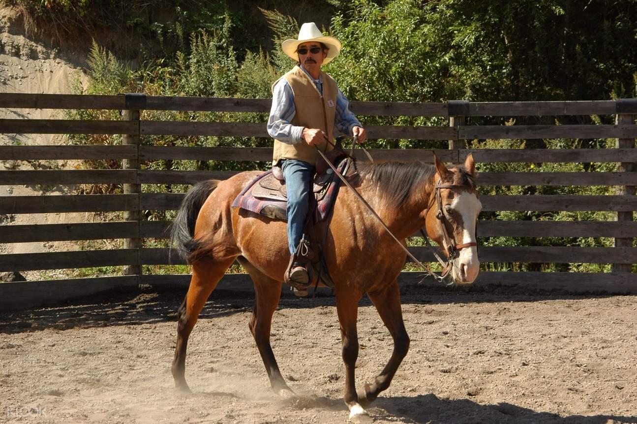 北海道騎馬體驗