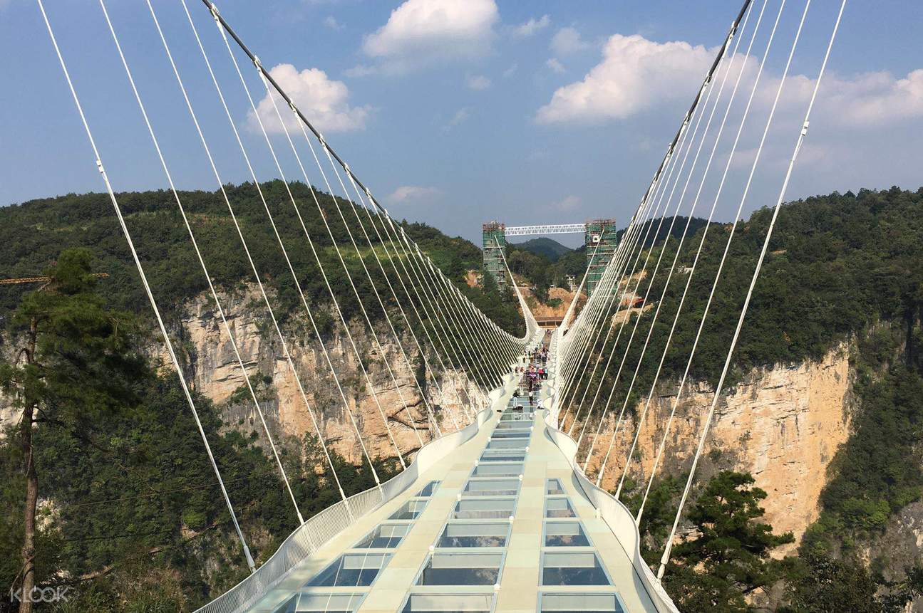 glass bridge - Zhangjiajie Glass Bridge