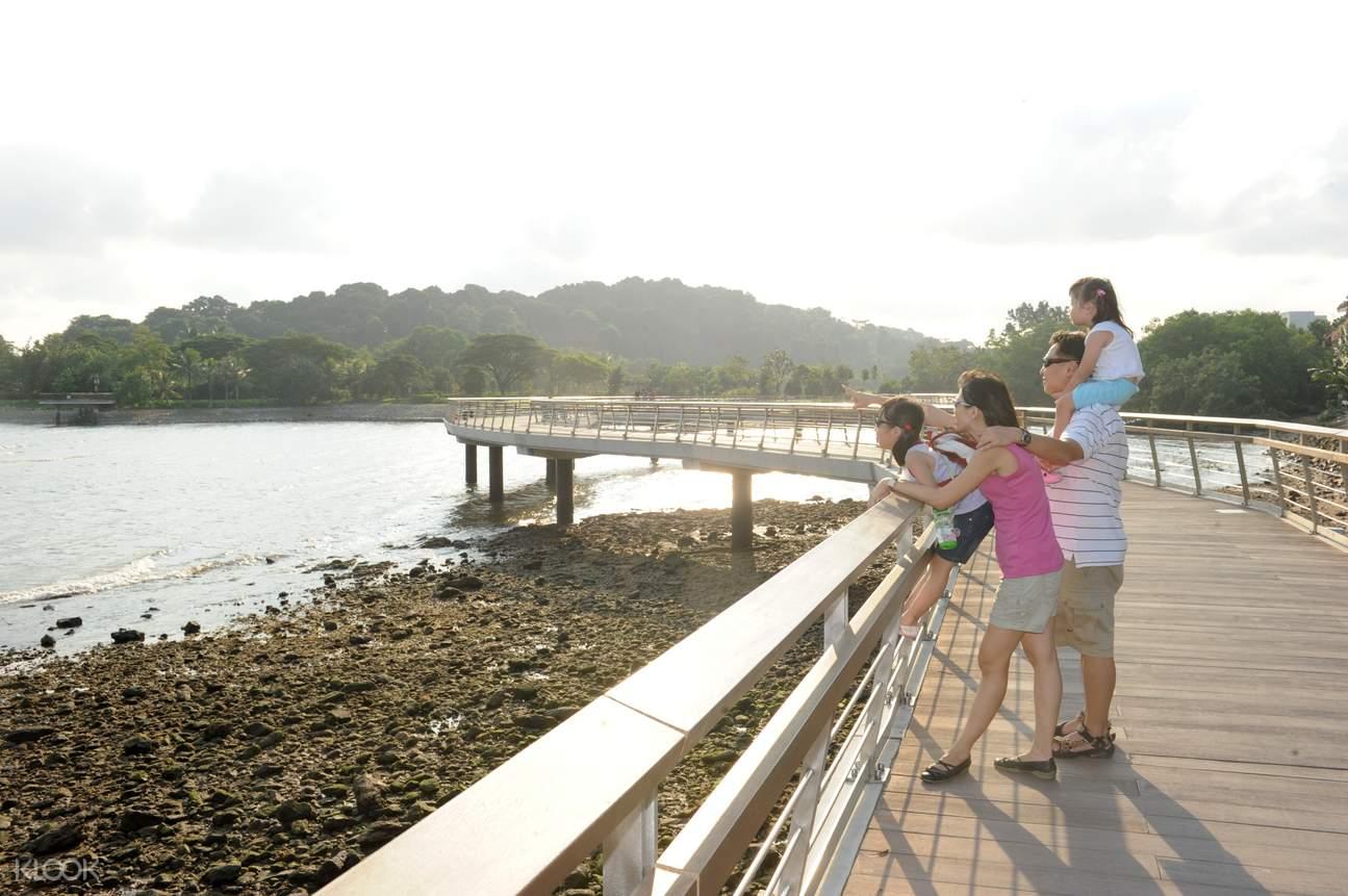 Berlayer Creek Boardwalk