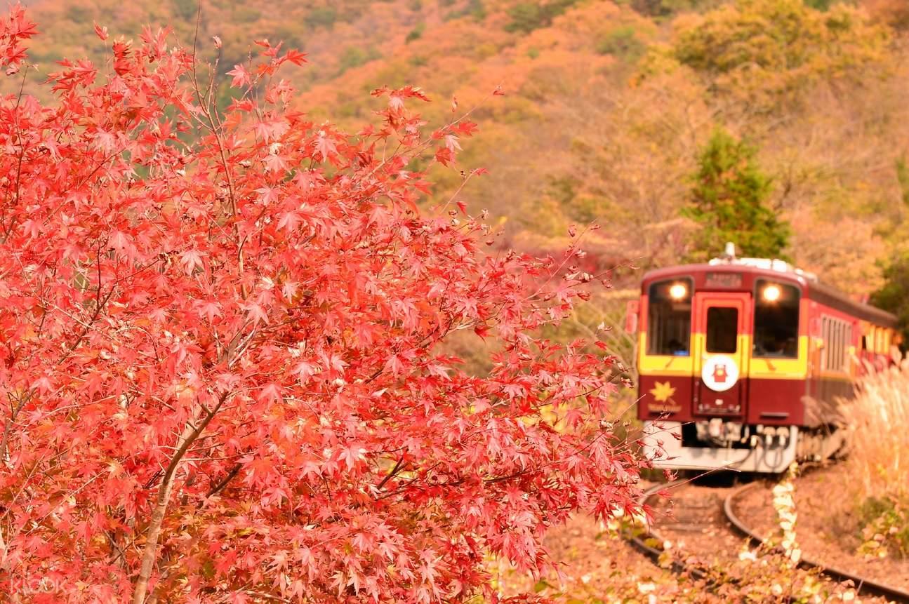 渡良濑溪谷铁道