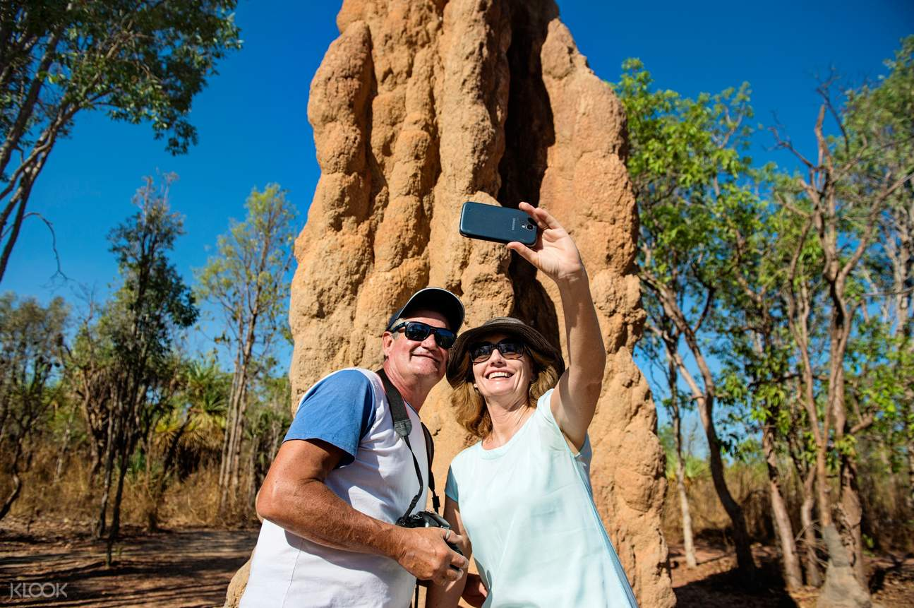 Magnetic Termite Mounds Darwin