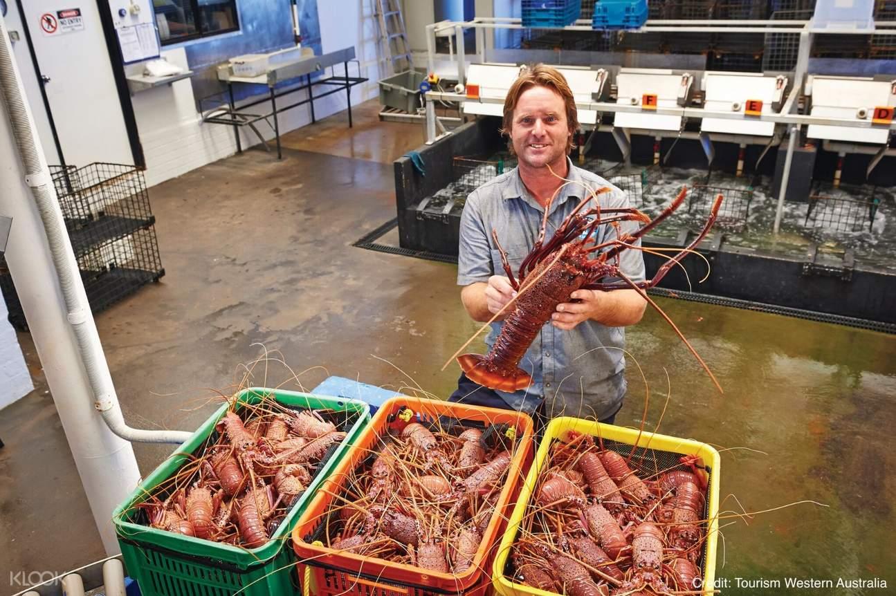 龍蝦觀光工廠