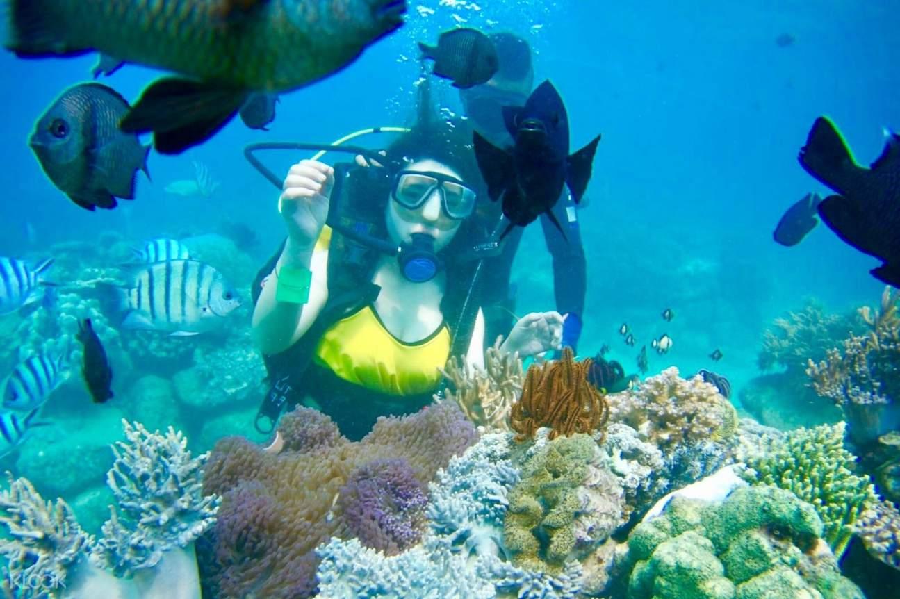 Woman scuba diving during the Nha Trang Island Hopping