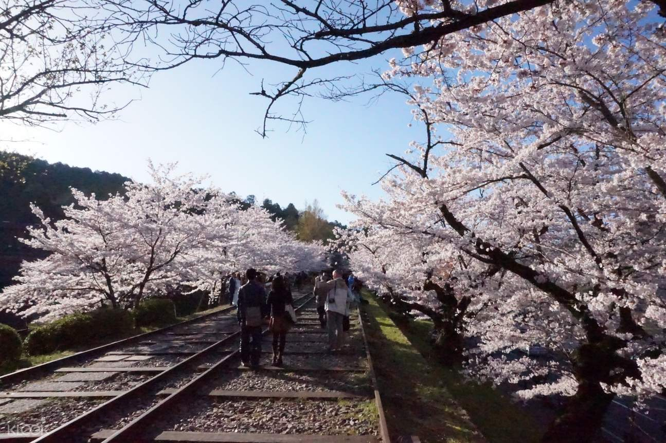 people walking along the tracks at Keage Incline