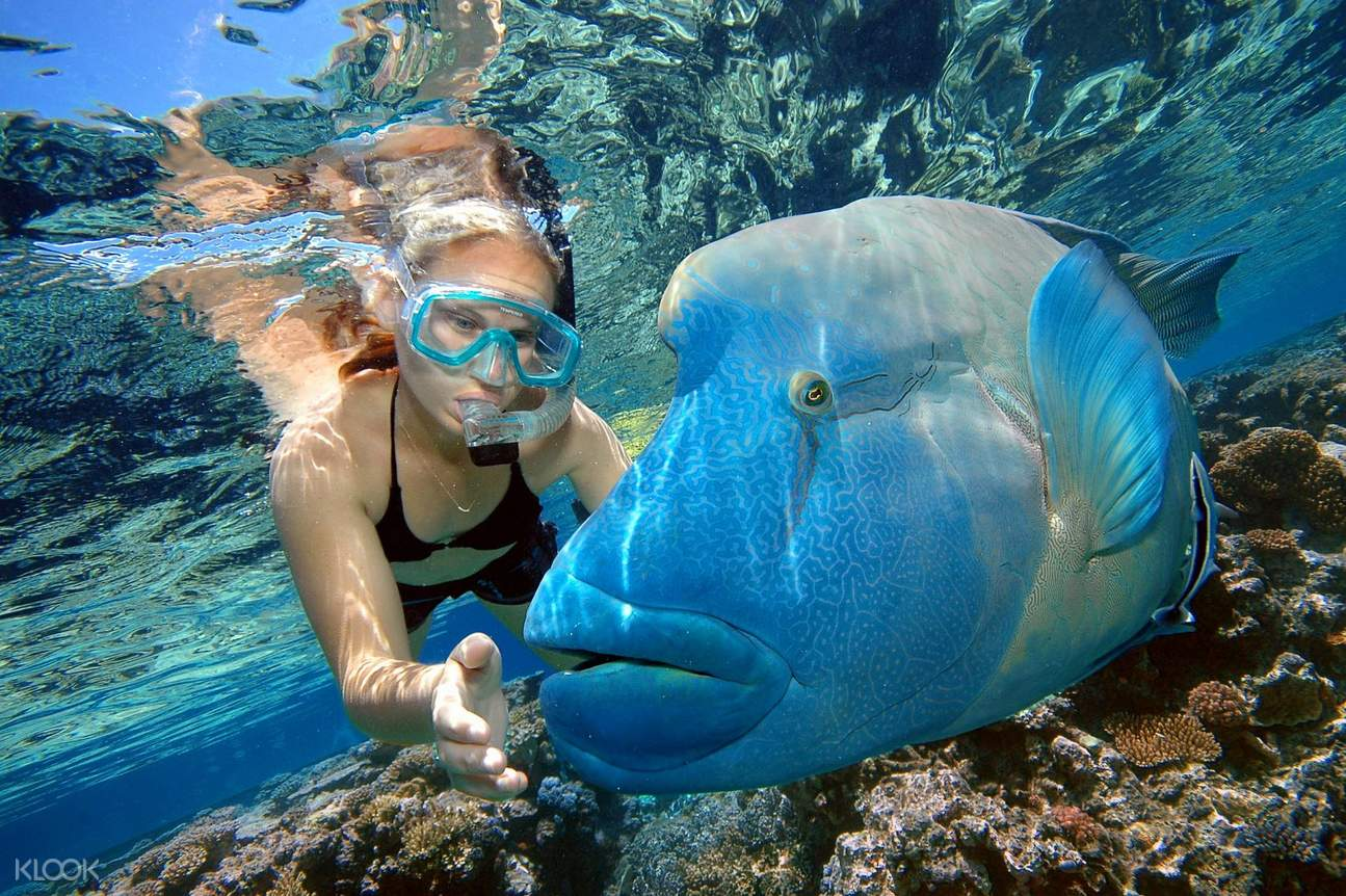Woman with blue fish in Great Barrier Reef