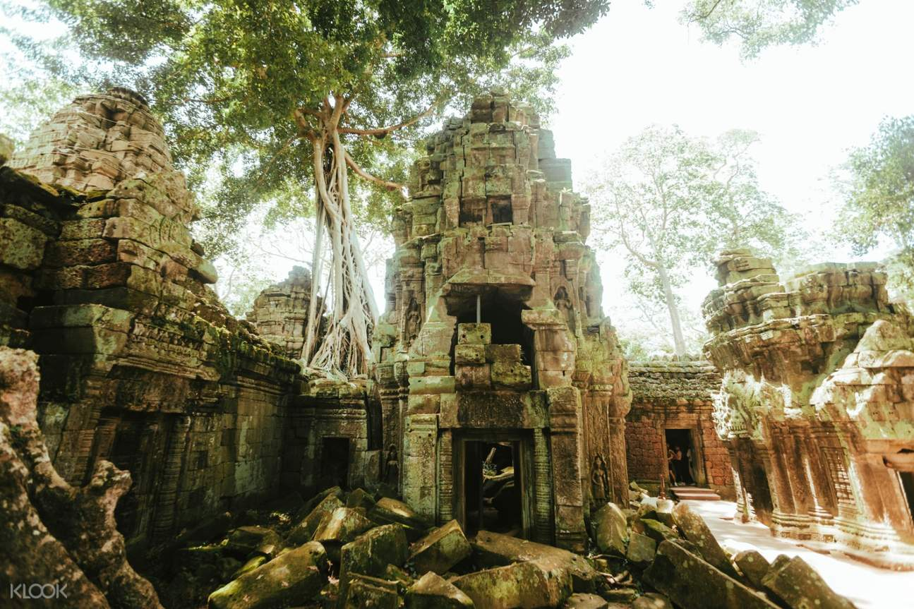 angkor custom tour siem reap