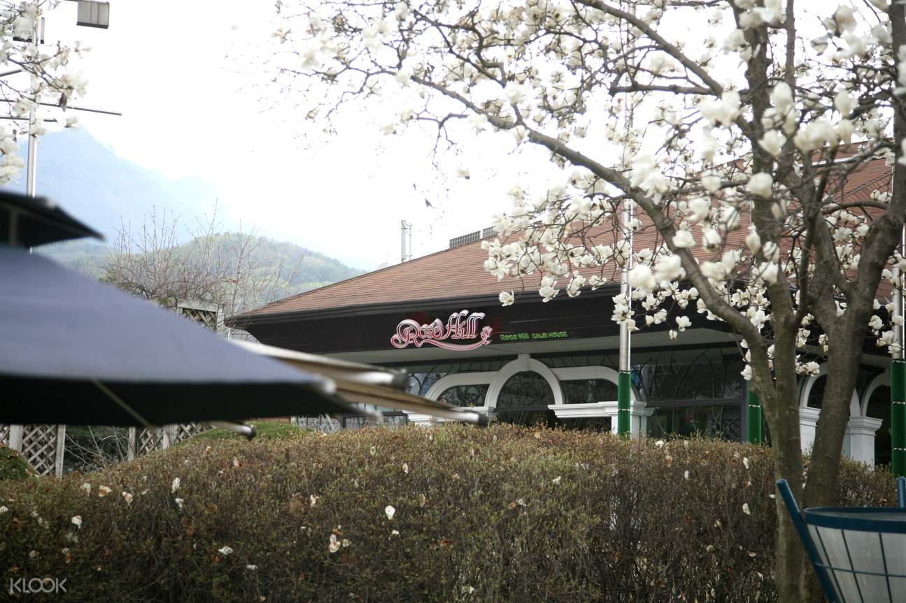 rose hill restaurant seoul land