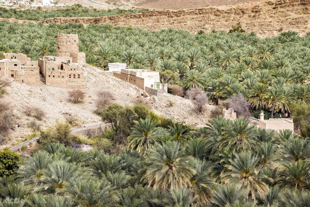 Jebel Akhdar綠山一日遊