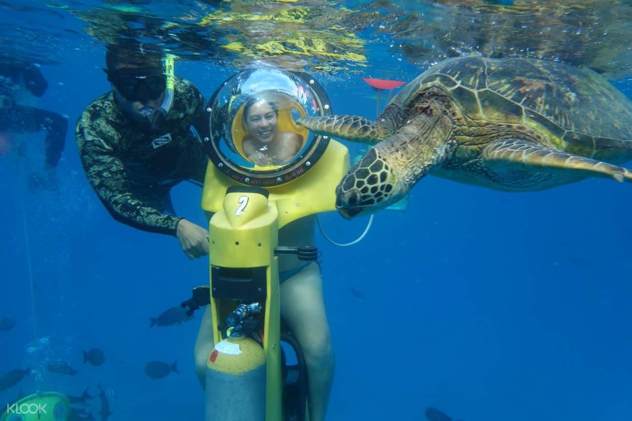 夏威夷經典水上活動:水下摩托車 & 遊船 & 浮潛