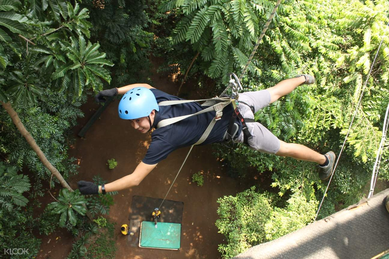 蘇比克樹頂冒險樂園 樹冠之旅