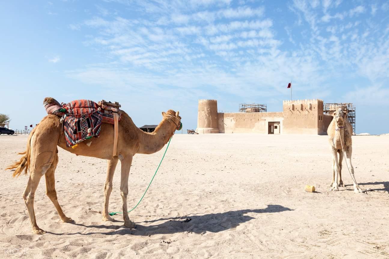 卡塔爾北部探索之旅