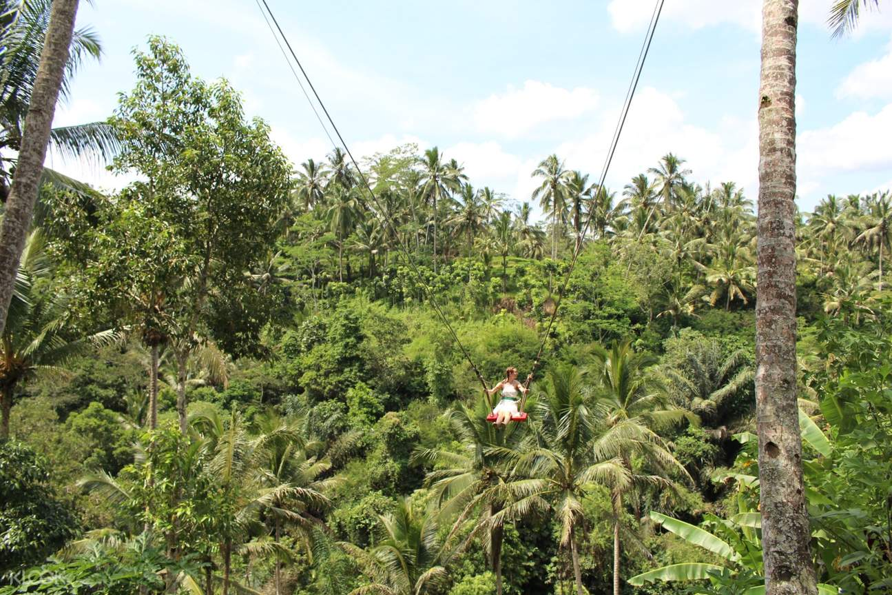 Bali Custom Day Trip - Klook