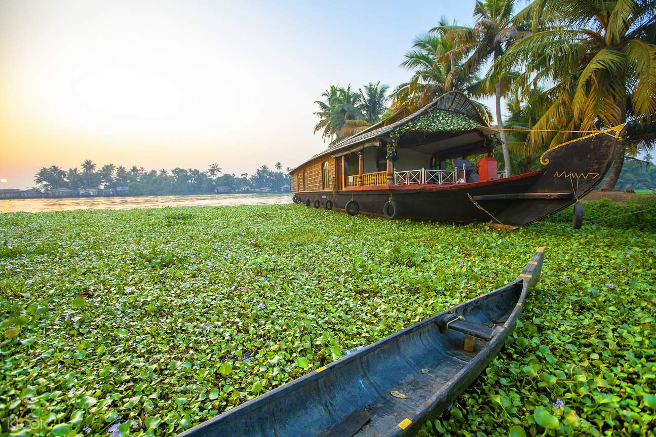 Backwater Houseboat Cruise Group Tour in Cochin