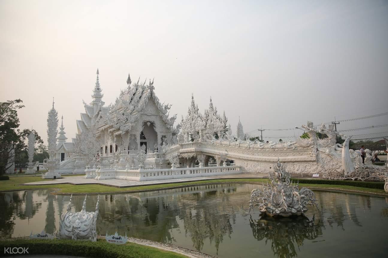 清萊白廟一日遊,清幽茶園一日遊,清萊白龍寺