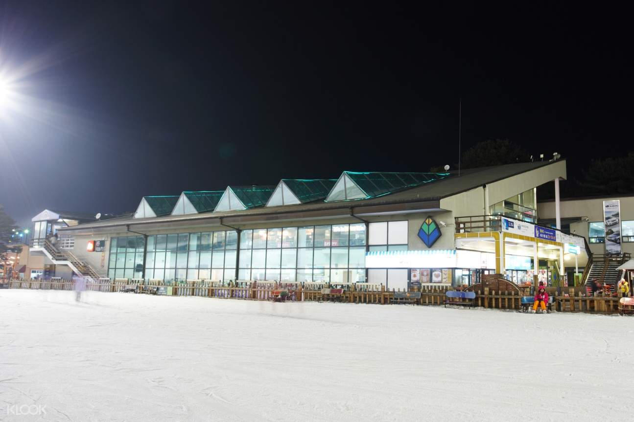 芝山滑雪度假村夜间滑雪 & 爱宝乐园一日游