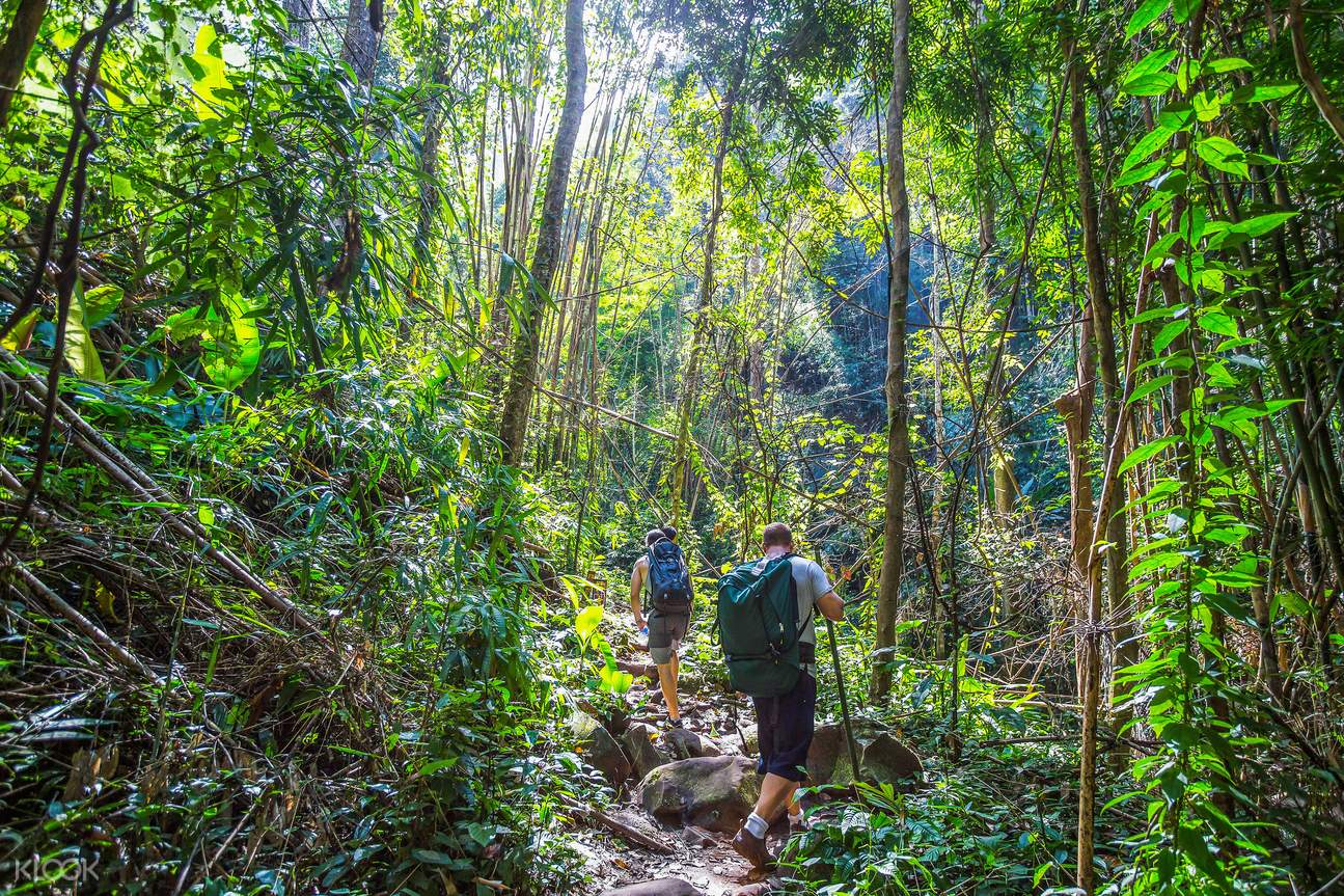 Image result for Hiking in koh li pe